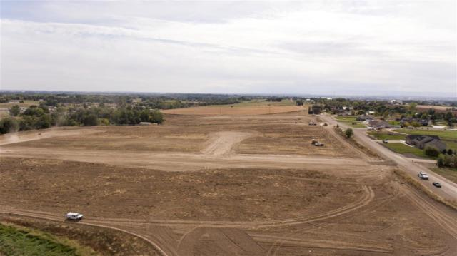 14162 Spotted Goat Ave, Caldwell, ID 83607 (MLS #98699187) :: Full Sail Real Estate