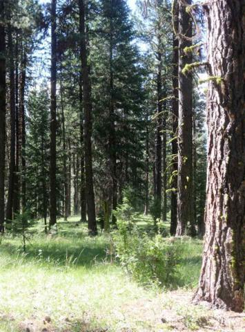 4220 Highway 95, New Meadows, ID 83654 (MLS #98699994) :: Build Idaho