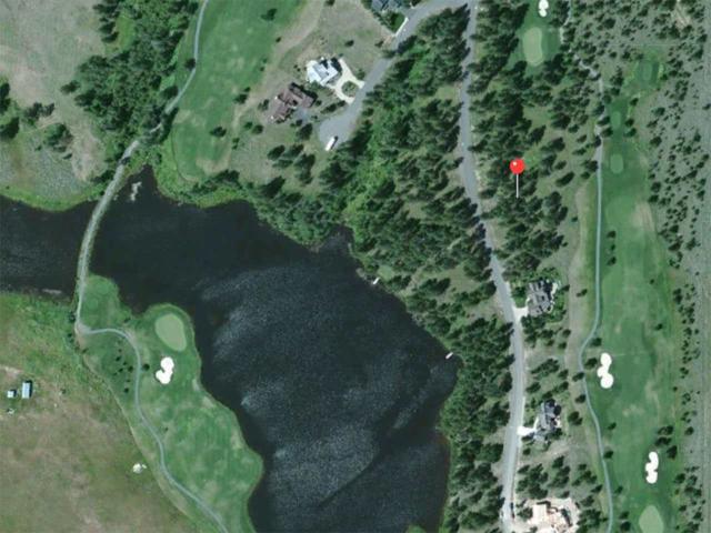 416 Wilhelm Creek Ct, Mccall, ID 83638 (MLS #98700010) :: Juniper Realty Group