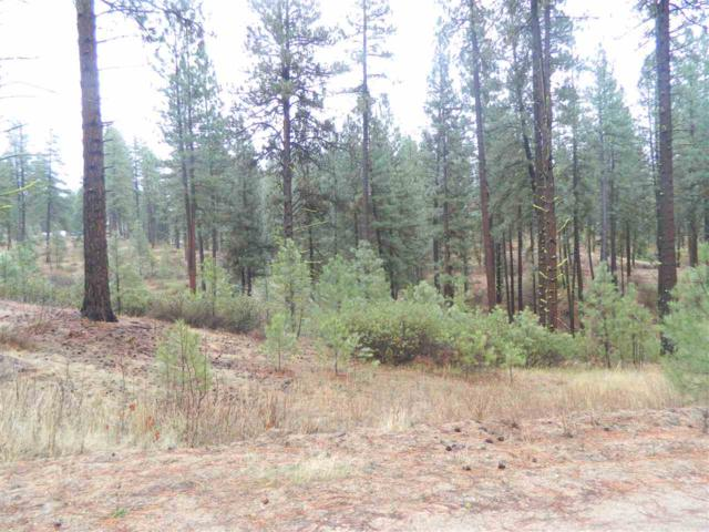 Lots 14 & 15 Duquette Pines, Idaho City, ID 83631 (MLS #98700099) :: Juniper Realty Group