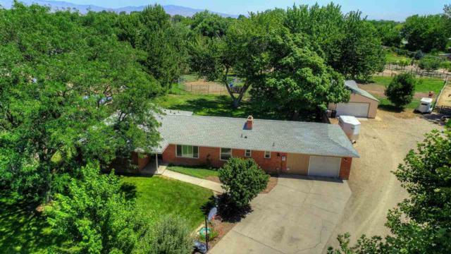 5176 S Paiute Circle, Boise, ID 83709 (MLS #98700715) :: Jon Gosche Real Estate, LLC