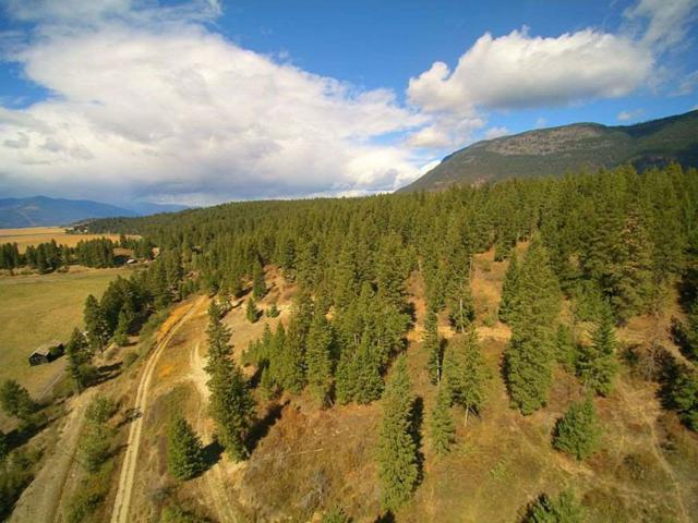 3057 Farm To Market Road, Bonners Ferry, ID 83805 (MLS #98700767) :: Boise River Realty