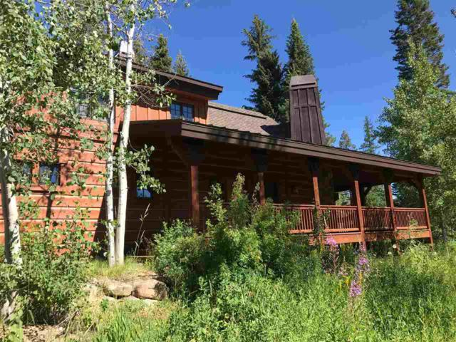 252 Discovery Drive, Donnelly, ID 83615 (MLS #98700986) :: Team One Group Real Estate