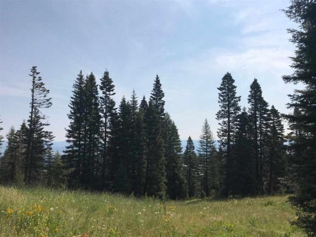 664 Whitewater, Donnelly, ID 83615 (MLS #98700997) :: Build Idaho