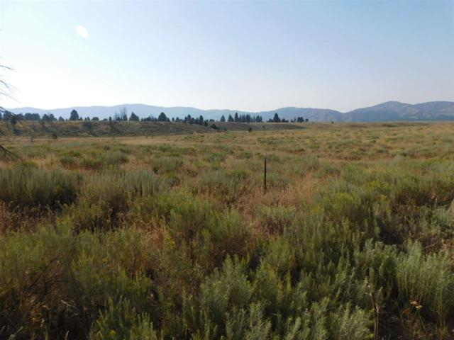 P-2 Arb Survey Sec 11 T1n R9e, Pine, ID 83647 (MLS #98701163) :: Broker Ben & Co.