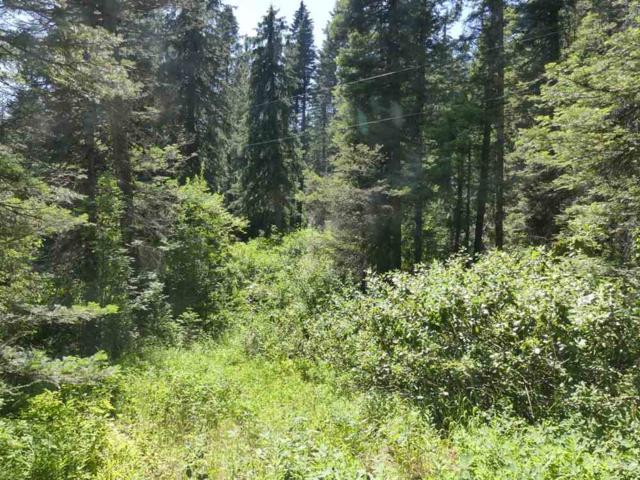 1813 Falcon Trail, Donnelly, ID 83615 (MLS #98701595) :: Full Sail Real Estate