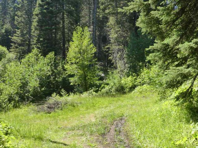 1815 Falcon Trail, Donnelly, ID 83615 (MLS #98701602) :: Full Sail Real Estate