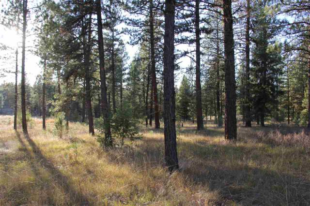 Lot 38 White Tail Court, New Meadows, ID 83654 (MLS #98701952) :: Team One Group Real Estate