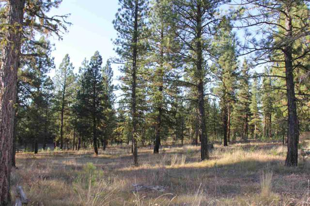 Lot 7 Timber Ridge Drive, New Meadows, ID 83654 (MLS #98702647) :: Team One Group Real Estate