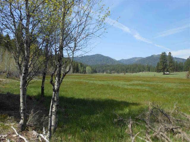 Trail Creek Meadows Ranch, Placerville, ID 83666 (MLS #98702664) :: Full Sail Real Estate