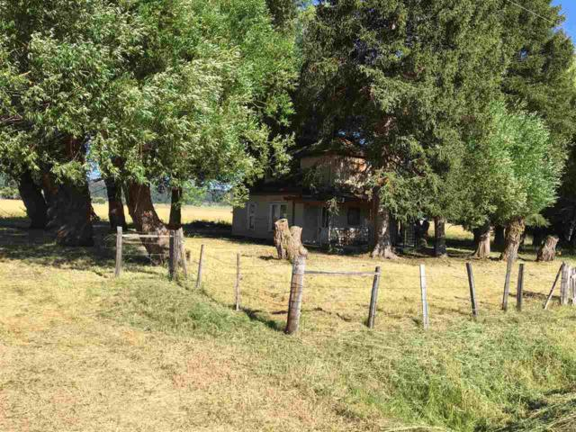 13148 Farm To Market, Donnelly, ID 83615 (MLS #98703008) :: Full Sail Real Estate