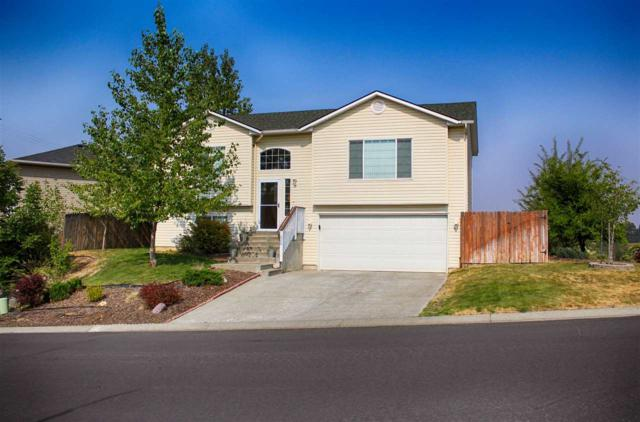 226 Pintail Lane, Moscow, ID 83843 (MLS #98703863) :: Givens Group Real Estate