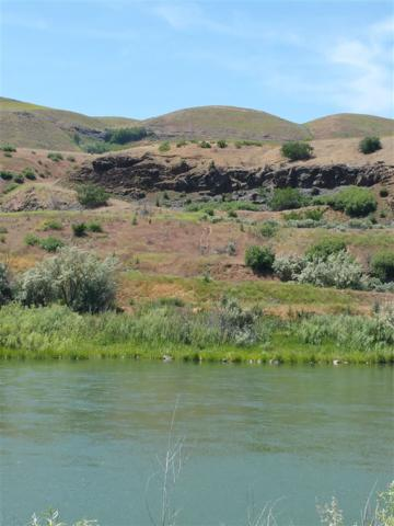 6210 King Hill Canal Rd, Lot 2, Bliss, ID 83314 (MLS #98704137) :: Juniper Realty Group