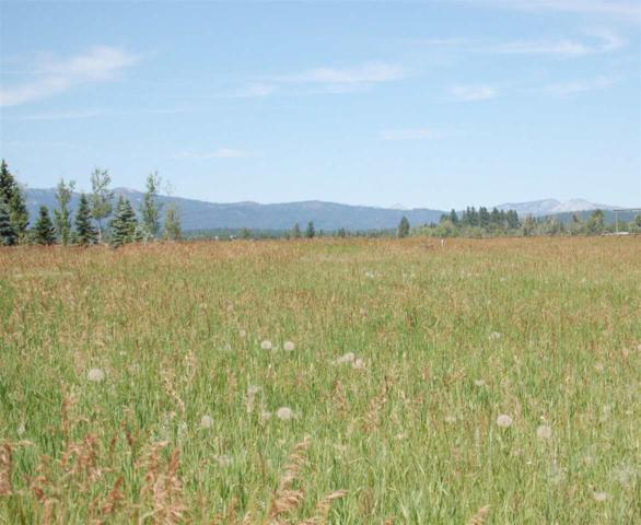Elkhorn Ranch Road, Mccall, ID 83638 (MLS #98704642) :: JP Realty Group at Keller Williams Realty Boise