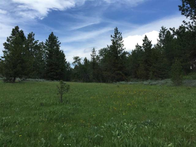 20 Carey Way, Cascade, ID 83611 (MLS #98704664) :: Full Sail Real Estate