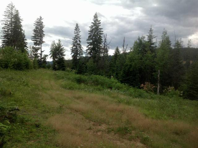 Parcel B Huckleberry Butte Rd, Orofino, ID 83544 (MLS #98705241) :: Zuber Group