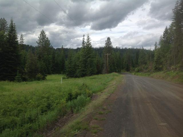 Parcel C Huckleberry Butte Rd, Orofino, ID 83544 (MLS #98705243) :: Zuber Group