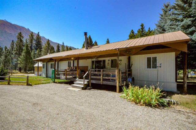34 W River Drive, Lowman, ID 83637 (MLS #98705485) :: New View Team