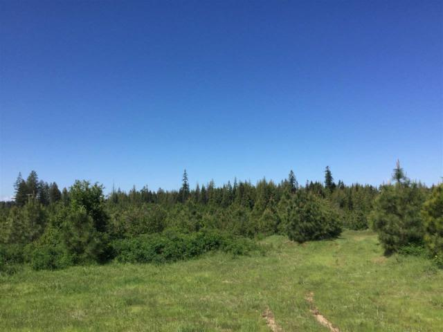 Parcel 1 Hilltop Lane, Orofino, ID 83544 (MLS #98705674) :: Zuber Group