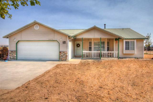 10250 Bill Burns Rd, Emmett, ID 83617 (MLS #98706481) :: Boise River Realty