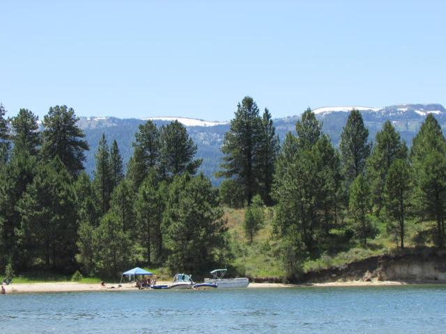 1254 Shore Drive, Cascade, ID 83611 (MLS #98706837) :: Boise River Realty