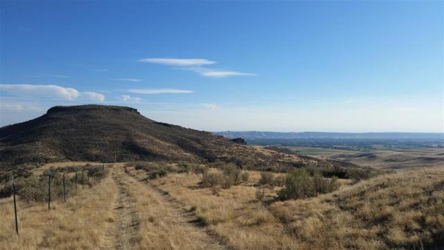 LOT 10 Hidden Hollow, Emmett, ID 83617 (MLS #98706863) :: Juniper Realty Group