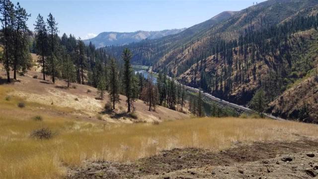 Lot 9 Pardee Tramway, Kamiah, ID 83536 (MLS #98707029) :: Boise River Realty