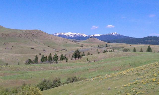 TBD Third Fork Road, Ola, ID 83657 (MLS #98707265) :: Boise River Realty