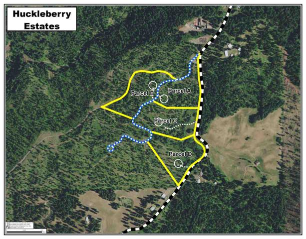 Parcel A Huckleberry Butte Rd, Orofino, ID 83544 (MLS #98707292) :: Zuber Group