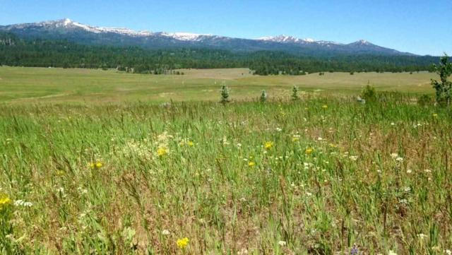 Lot 3 Liberty Springs #2, Cascade, ID 83611 (MLS #98707552) :: Juniper Realty Group