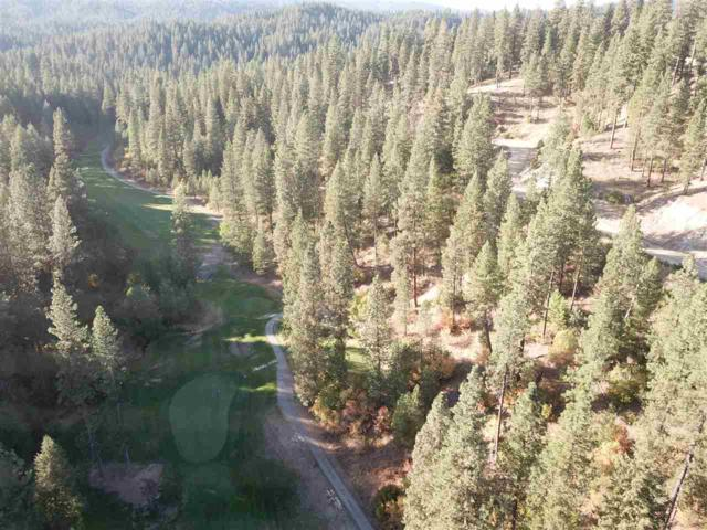 Lot 3 North Ridge At Terrace Lakes, Garden Valley, ID 83622 (MLS #98707712) :: Jeremy Orton Real Estate Group