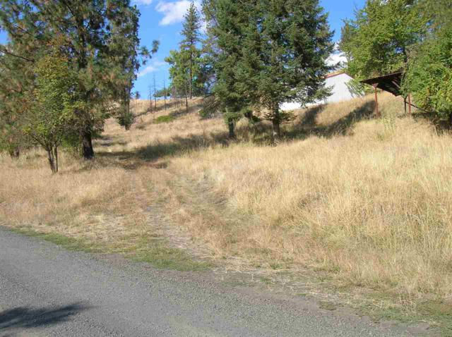 158 Hillside Dr, Kamiah, ID 83654 (MLS #98707741) :: Jon Gosche Real Estate, LLC