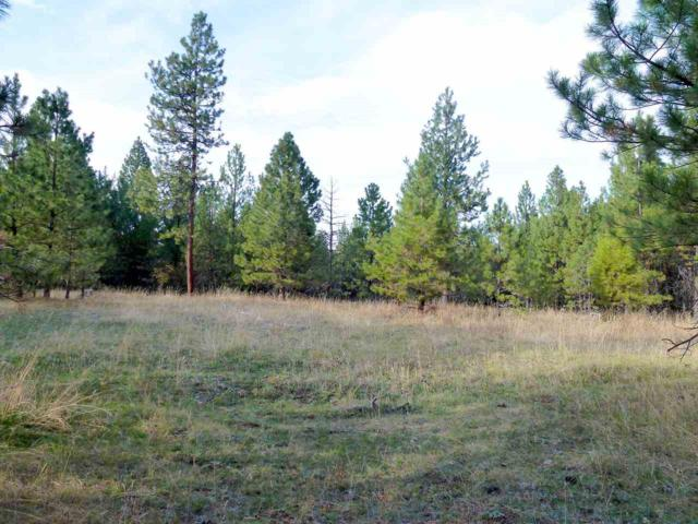 TBD Jack Pine Road, White Bird, ID 83554 (MLS #98707824) :: Full Sail Real Estate