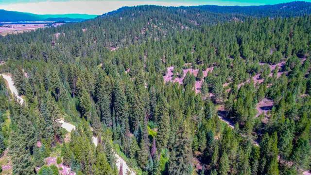 TBD Skunk Creek Rd., Cascade, ID 83611 (MLS #98708115) :: Boise River Realty