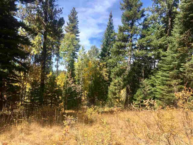TBD Knights Road, Mccall, ID 83638 (MLS #98708984) :: Full Sail Real Estate