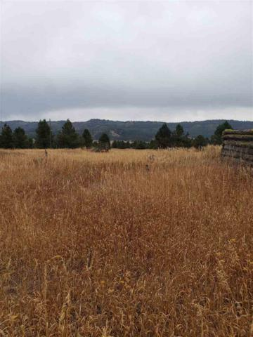 Lot 1 Garrett Drive, Cascade, ID 83611 (MLS #98709267) :: Minegar Gamble Premier Real Estate Services