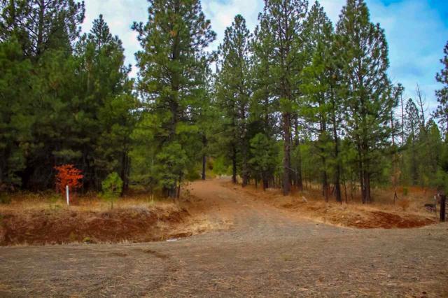 Lot 17 Elk Crossing, Council, ID 83612 (MLS #98709545) :: Juniper Realty Group