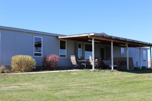 24294 Tiger Lane, Caldwell, ID 83607 (MLS #98709876) :: Build Idaho
