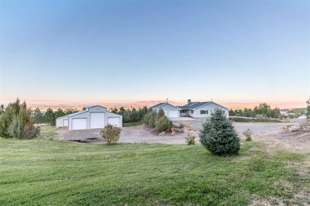 7680 Appaloosa Lane, Emmett, ID 83617 (MLS #98710146) :: Full Sail Real Estate