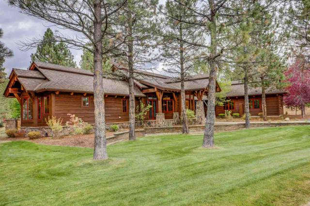 318 Whitetail Drive, Mccall, ID 83638 (MLS #98710506) :: Juniper Realty Group
