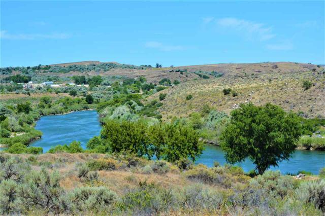 1238 River Rd, Buhl, ID 83316 (MLS #98710584) :: Jackie Rudolph Real Estate