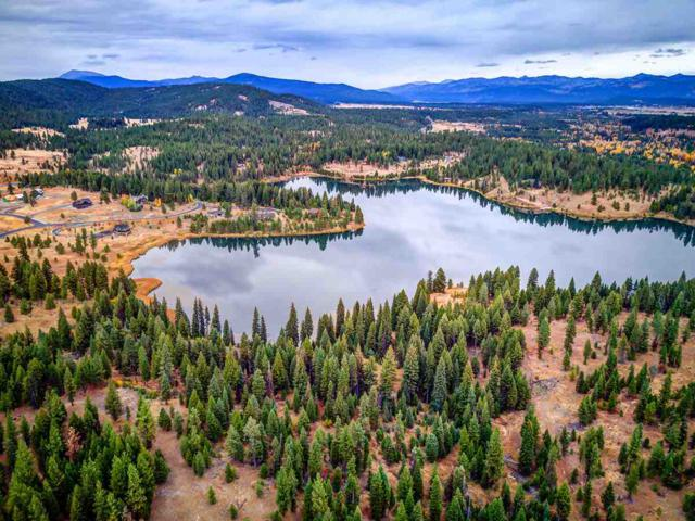 TBD Blackhawk Lake Drive, Mccall, ID 83638 (MLS #98710666) :: Zuber Group
