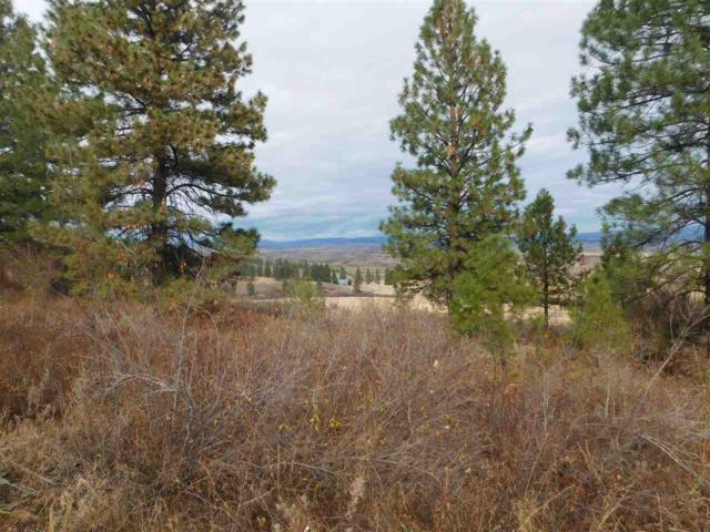 13 Elk Crossing Drive, Council, ID 83612 (MLS #98711343) :: Juniper Realty Group