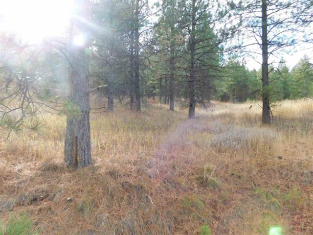 08 Elk Crossing Drive, Council, ID 83612 (MLS #98711345) :: Juniper Realty Group