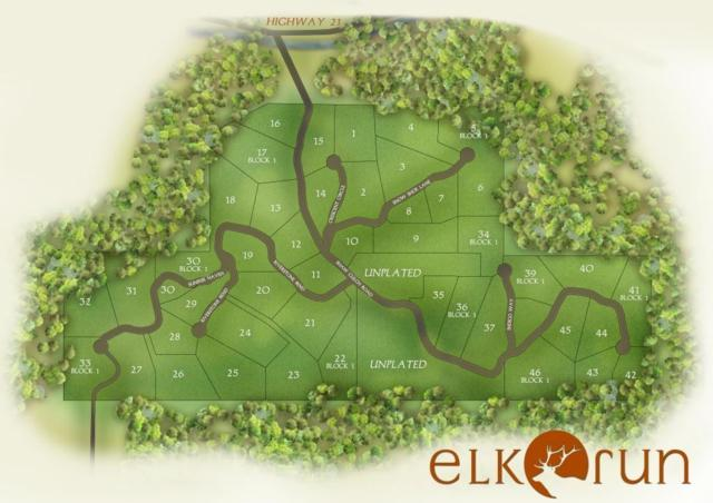 Lot 2 Blk 1 Elk Run Sub, Idaho City, ID 83631 (MLS #98711816) :: New View Team