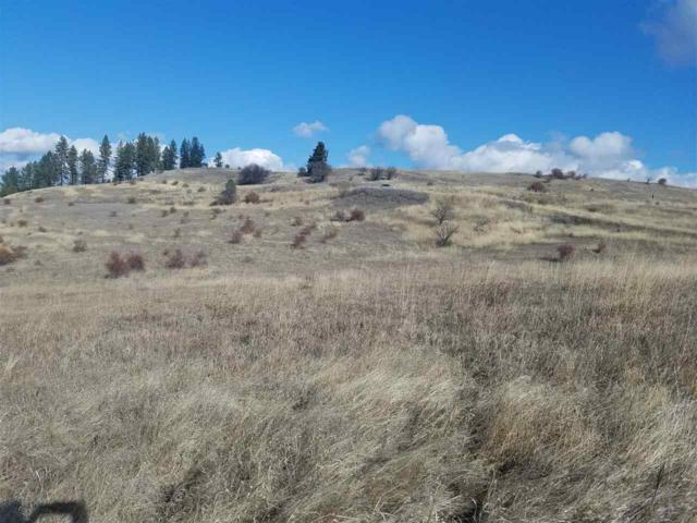 36 Amber Avenue, Kooskia, ID 83539 (MLS #98712080) :: Full Sail Real Estate