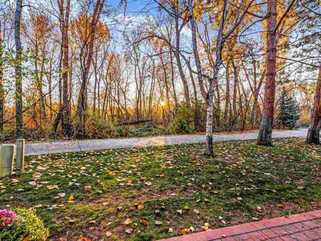 1171 E. Kimberley Lane, Boise, ID 83712 (MLS #98712244) :: Givens Group Real Estate