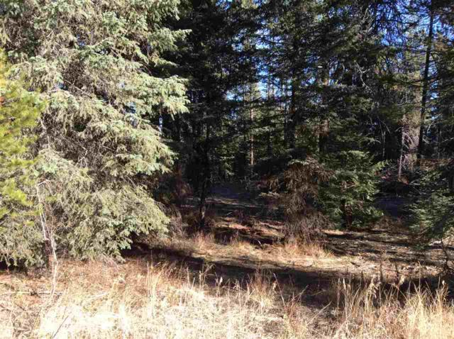 2528 Westwood Dr, Donnelly, ID 83615 (MLS #98712418) :: Full Sail Real Estate