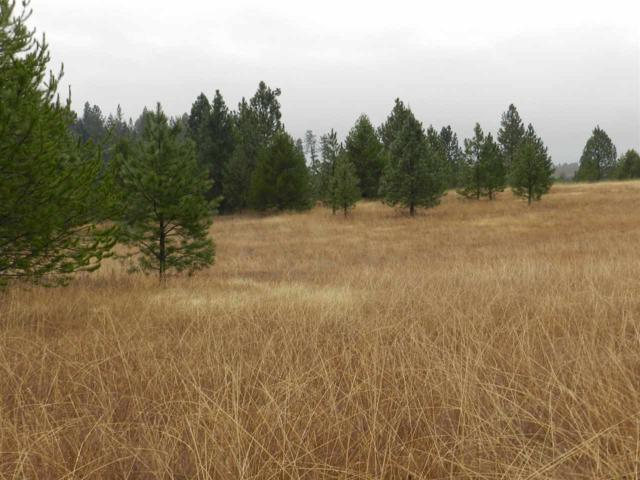 NNA Mica Mountain Road, Deary, ID 83823 (MLS #98712759) :: Zuber Group