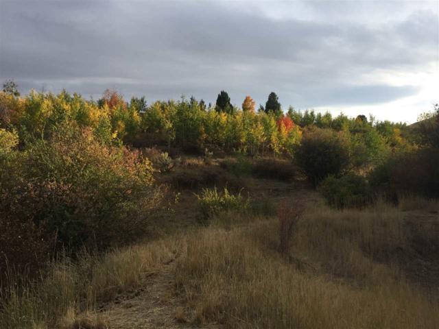1615 Carter Lane, Grace, ID 83241 (MLS #98712846) :: Boise River Realty